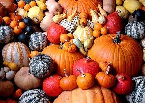 pumpkin-varieties