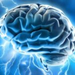 Boost Brain Health With Whole Foods