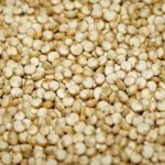 Quinoa The Ancestral Gold Secret